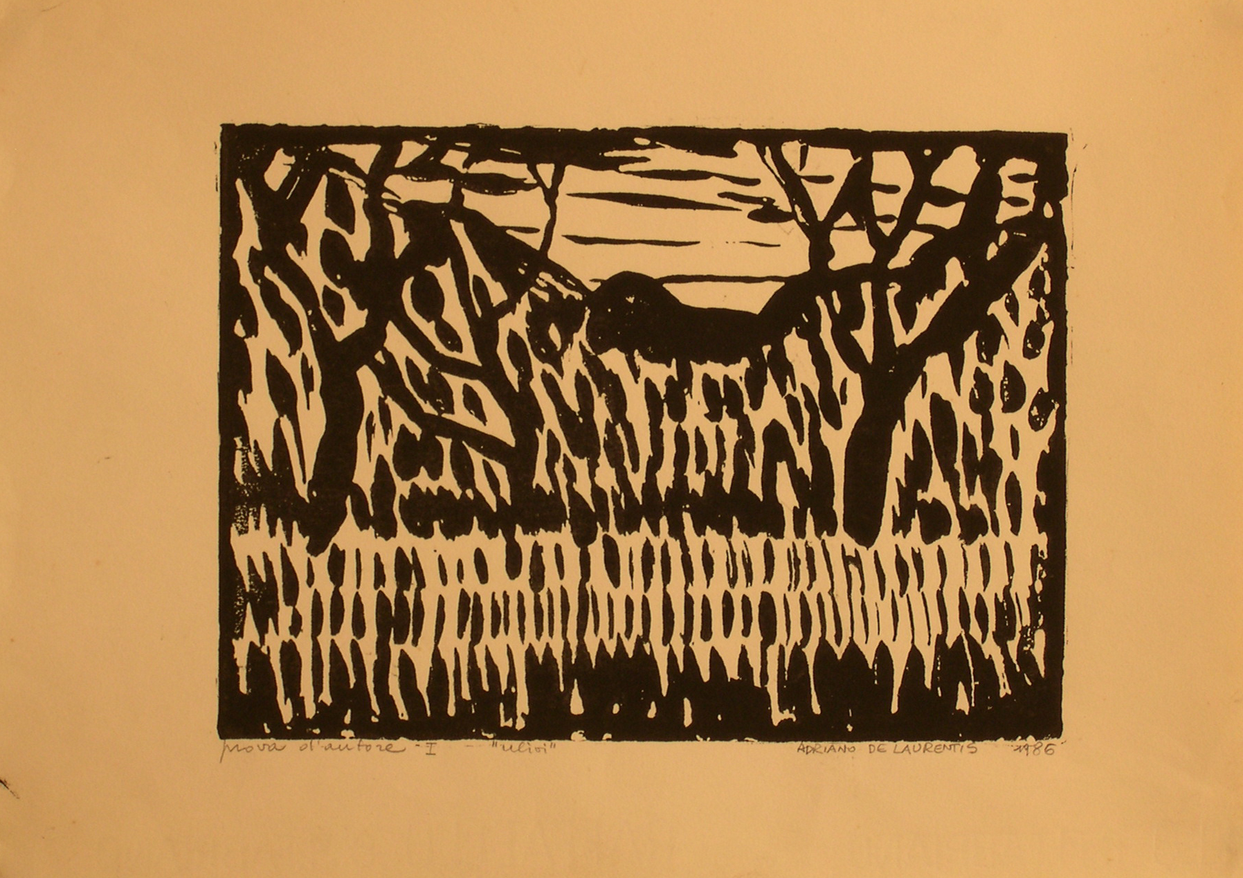 Ulivi - Prova d'autore 1 - 1986 - Stampa Linoleum su Carta - 24x33